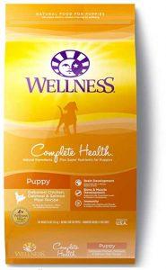 wellness shih tzu puppies food