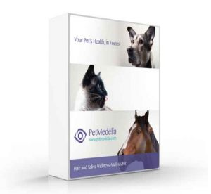 petmedella dog allergy test kit