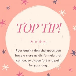 dog shampoo for grooming supplies