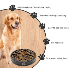 dycam slow feed dog bowl