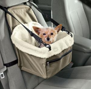 shih tzu car seat