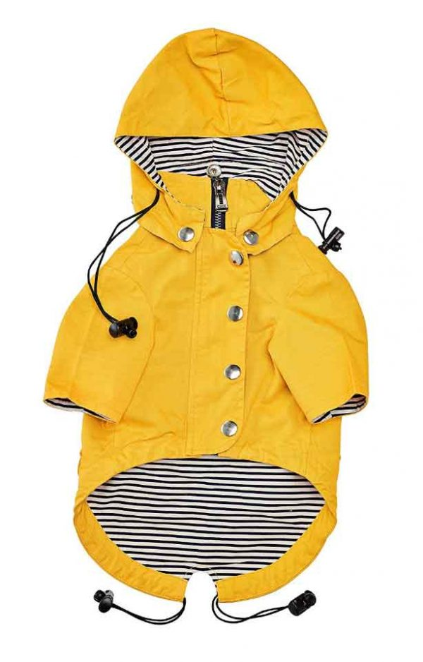 ellie wear dog yellow raincoat