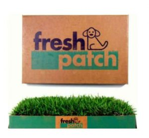 fresh patch dog litter tray