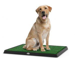 petmaker artificial grass litter tray