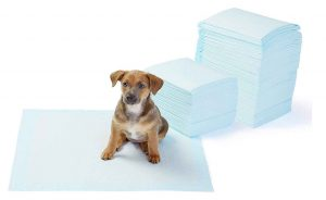 puppy pads for litter tray