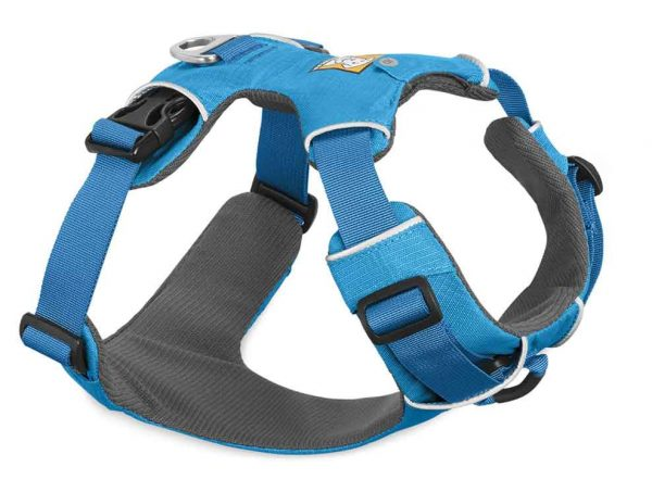 harness for small dog