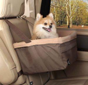 solvit petcare dog car seat