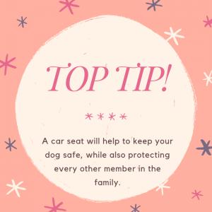 top tip dog car seat