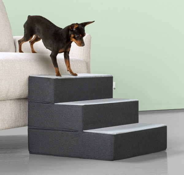 steps for small dogs