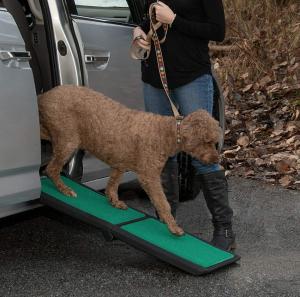 dog steps for car