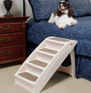 solvit dog steps