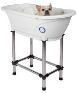 flying pig dog bath