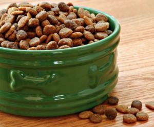 dog food shih tzu allergies