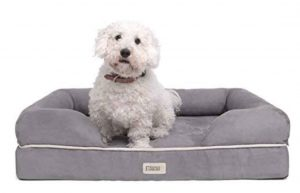 forever friends shih tzu dog-bed