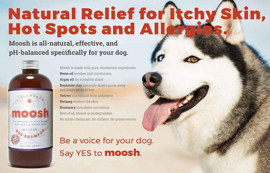 moosh shampoo allergies