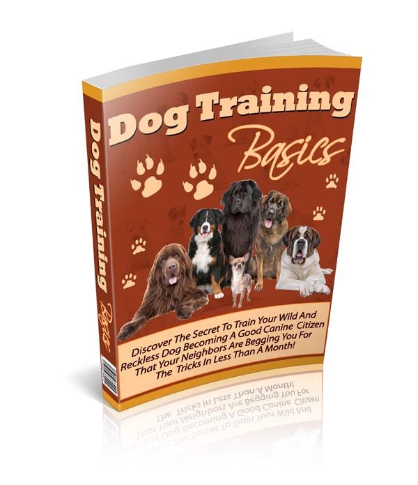 Dog Training Basics Ebook Shih Tzu 4u